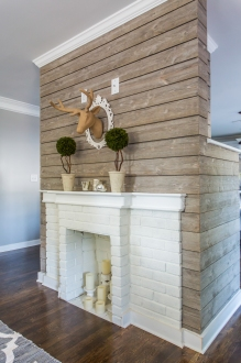 living_fireplace